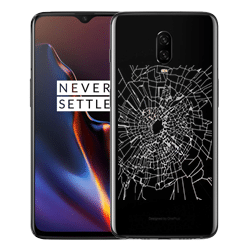 OnePlus 6T Back Glass Repair Singapore